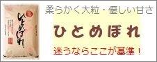 滋賀県産「ひとめぼれ」