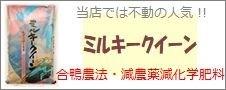 兵庫県産「ミルキークイーン」