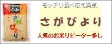 佐賀県産「さがびより」