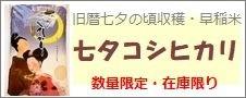 佐賀県産「七夕コシヒカリ」