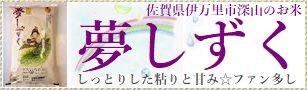 佐賀県産「夢しずく」