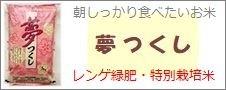 福岡県産「夢つくし」