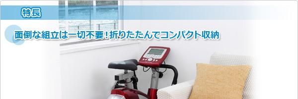 プログラムバイクAFB6010R