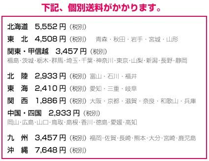 ★個別送料:関西 1,886円(税別)〜沖縄 7,648円(税別)が掛かります。