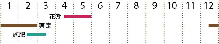 開花カレンダー(ハクサンボク)