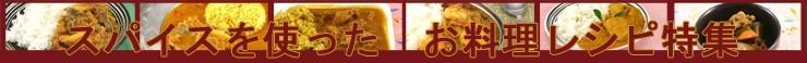 スパイスを使ったお料理レシピ/インド風やスリランカ風のカレーレシピ