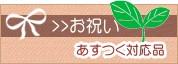 お祝い【あすつく対応品】