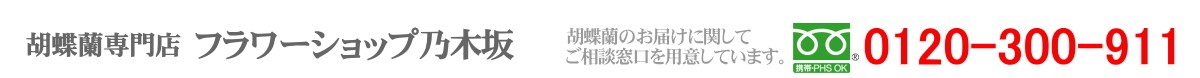 胡蝶蘭専門店 フラワーショップ乃木坂 0120-300-911