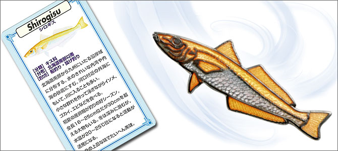 FISHPIN'SCOLLECTION海水魚シロギス