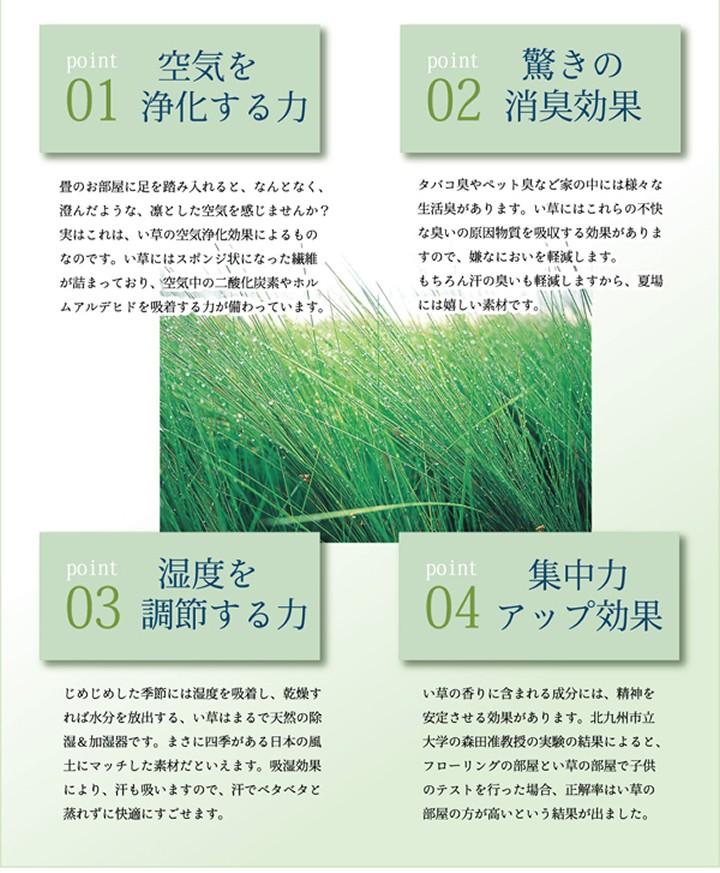 い草 寝ござ 国産 調湿効果 空気清浄 消臭効果 天然素材 快眠 やわらか しなやか いぐさ