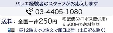 バレエ経験者のスタッフがお応えします。0120-398-083(携帯からは:03-6675-9120)●全国一律200円 宅配便(ネコポス便併用)