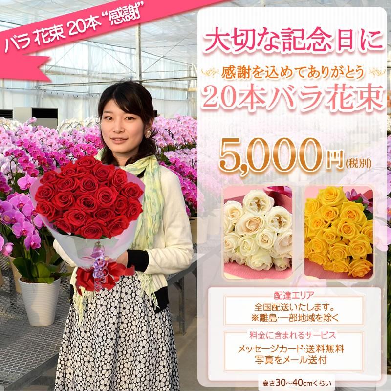 バラ花束20本