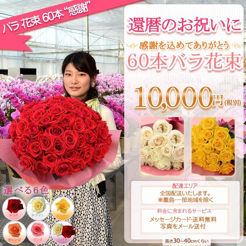 バラ花束60本