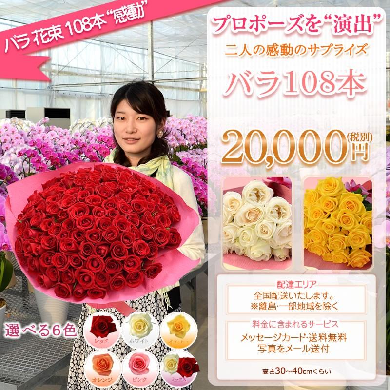 バラ花束108本