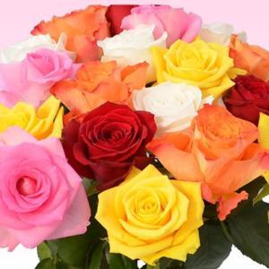 バラ 花束 200円/1本還暦祝い 選べるカラー 30本〜始めました。フラワーギフト プレゼント プロポーズ 花 花束 還暦祝い 敬老の日【rose】|ebina-youran|10