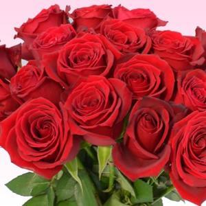バラ 花束 200円/1本還暦祝い 選べるカラー 30本〜始めました。フラワーギフト プレゼント プロポーズ 花 花束 還暦祝い 敬老の日【rose】|ebina-youran|05