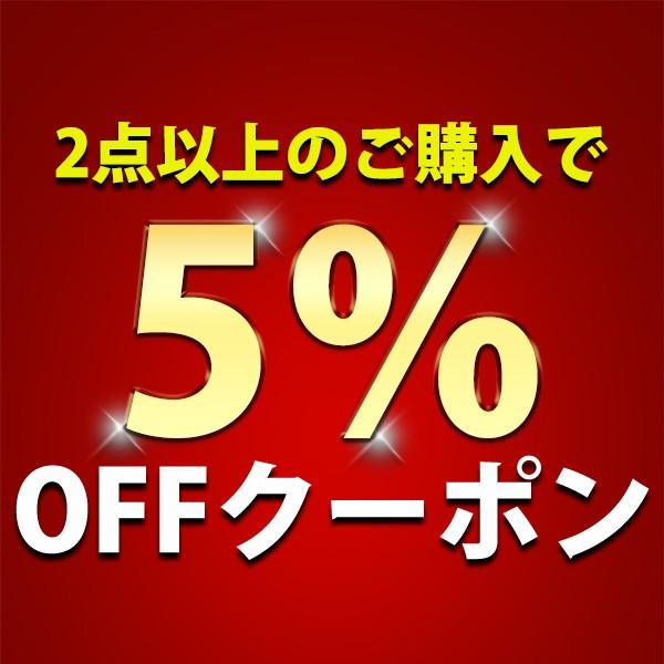 2点以上購入で5%引きクーポン!