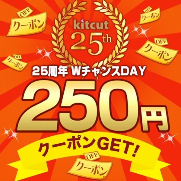 【25周年WチャンスDAY】250円OFFクーポン