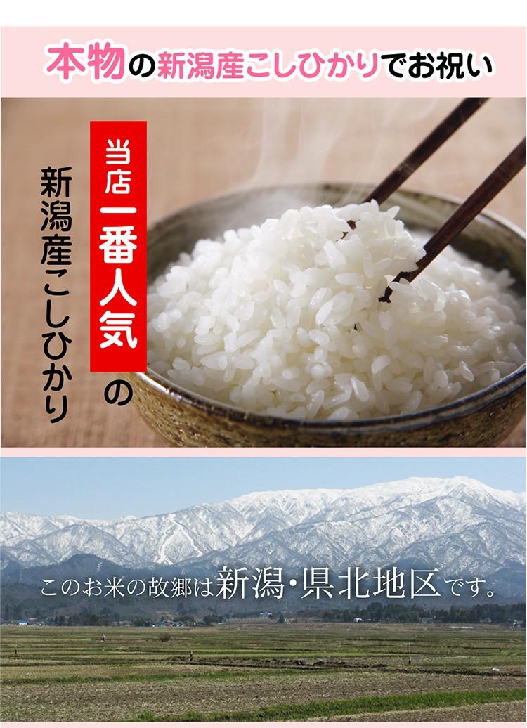 お米について