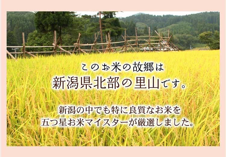 お米説明2