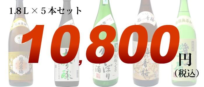 42弾日本酒セット価格