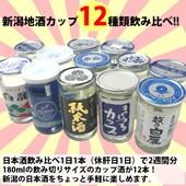 日本酒カップ酒12本セット