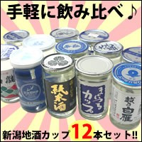 新潟日本酒カップ酒12本飲み比べセット