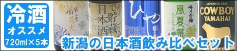 冷酒で美味しい日本酒セット