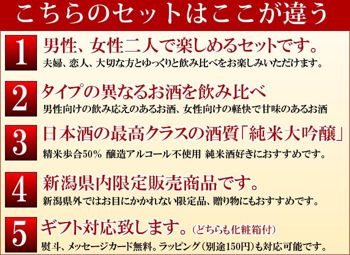 日本酒セット セットの特徴