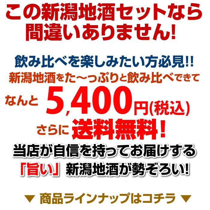 日本酒セット送料無料5,400円