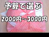 予算2000〜3000