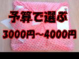 予算3000〜4000