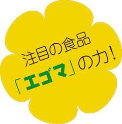 注目の食品えごま(エゴマ)