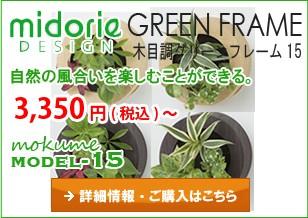 グリーンフレーム-ニューモデル