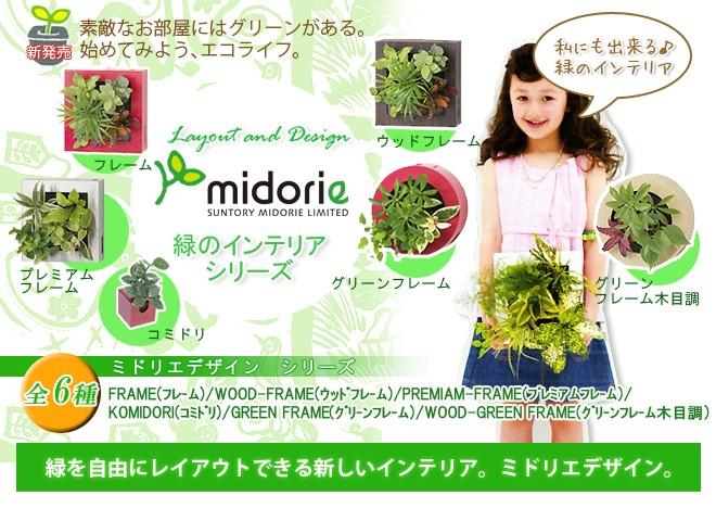 緑を自由にレイアウトできる新しいインテリア。ミドリエデザイン。