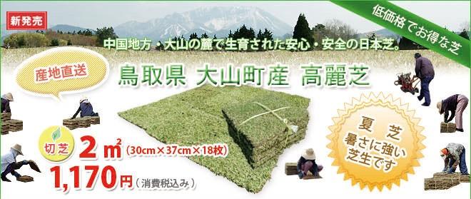 鳥取県 大山町で生産された野芝・高麗芝。一般庭園用として人気です。夏場に最適な芝生です。