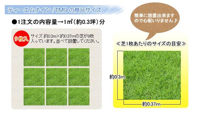 ティーエムナイン/TM9の商品サイズ