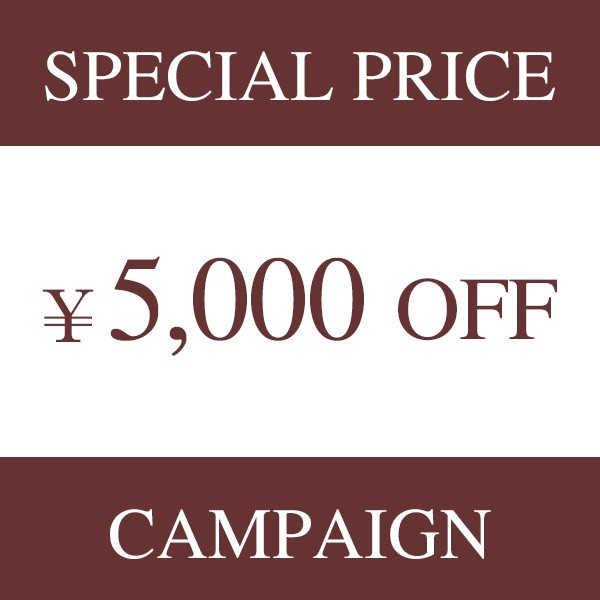 DEEBOT 901 5000円クーポンSS