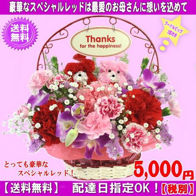 スペシャルアレンジ4,980円【送料無料】