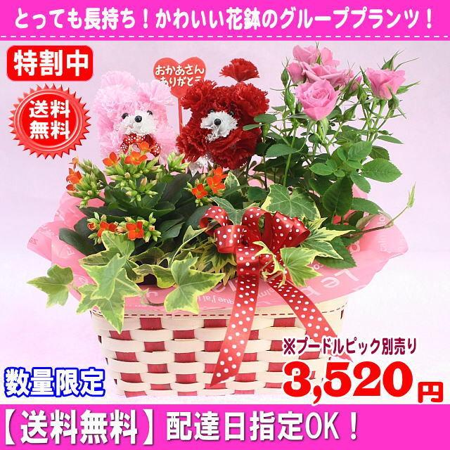 2017母の日花持ち花鉢★マミーバスケット2,980円【送料無料】