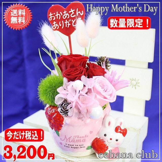 ラビットプリザレッド3,200円【送料無料】