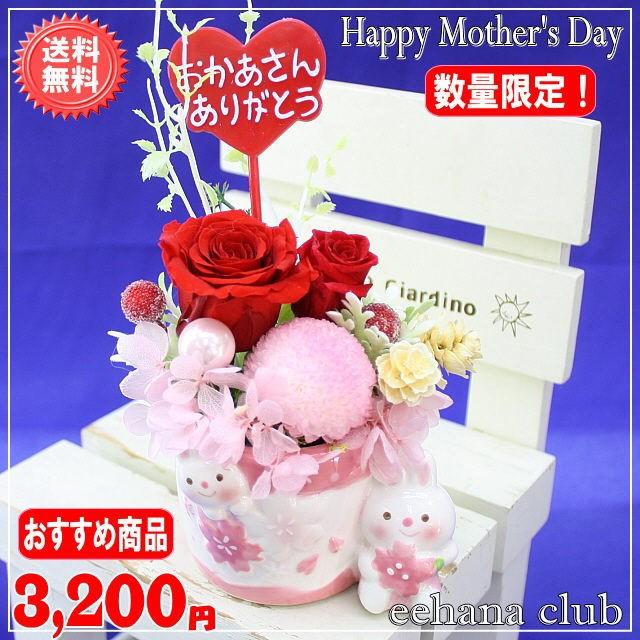 サクラレッド3,200円【送料無料】