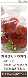 カテゴリ5:お母さんにあげるお花に