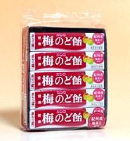 ★まとめ買い★ カンロ 健康梅のど飴スティック ×10個【イージャパンモール】