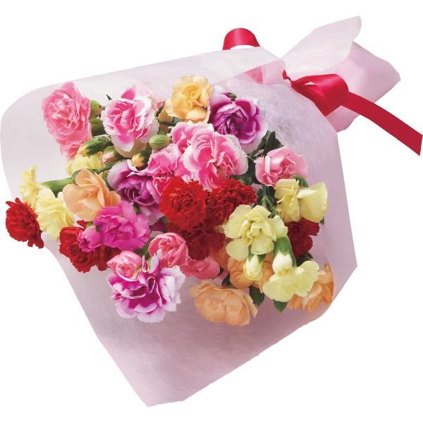 【送料無料】【母の日】7色カーネーション 花束【代引不可】【ギフト館】