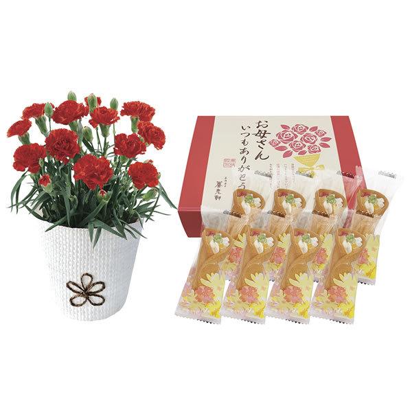 【送料無料】【母の日】母の日 カーネーション&京のミニブーケスイーツセット KAS−01【ギフト館】