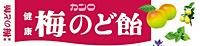 ★まとめ買い★ カンロ 梅のど飴 ×10個【イージャパンモール】
