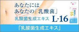 乳酸菌生成エキスL-16