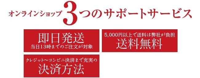 オンラインショップ3つのサポートサービス 即日配送、5千円以上で送料無料