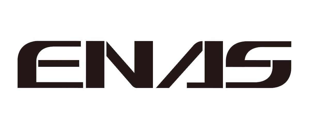 イナスストア ロゴ